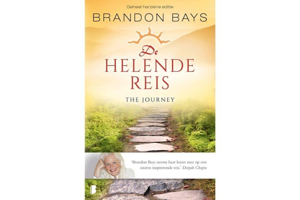 'De helende reis' van Brandon Bays